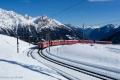 Il Trenino Rosso Alp Grum