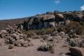 Acclimatamento-alle-zebra-rocks