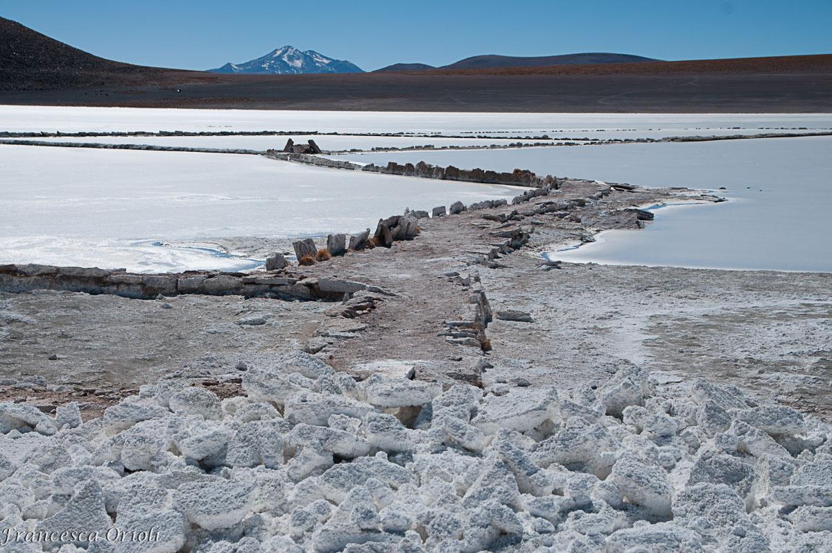 Lagune-bolivia-11