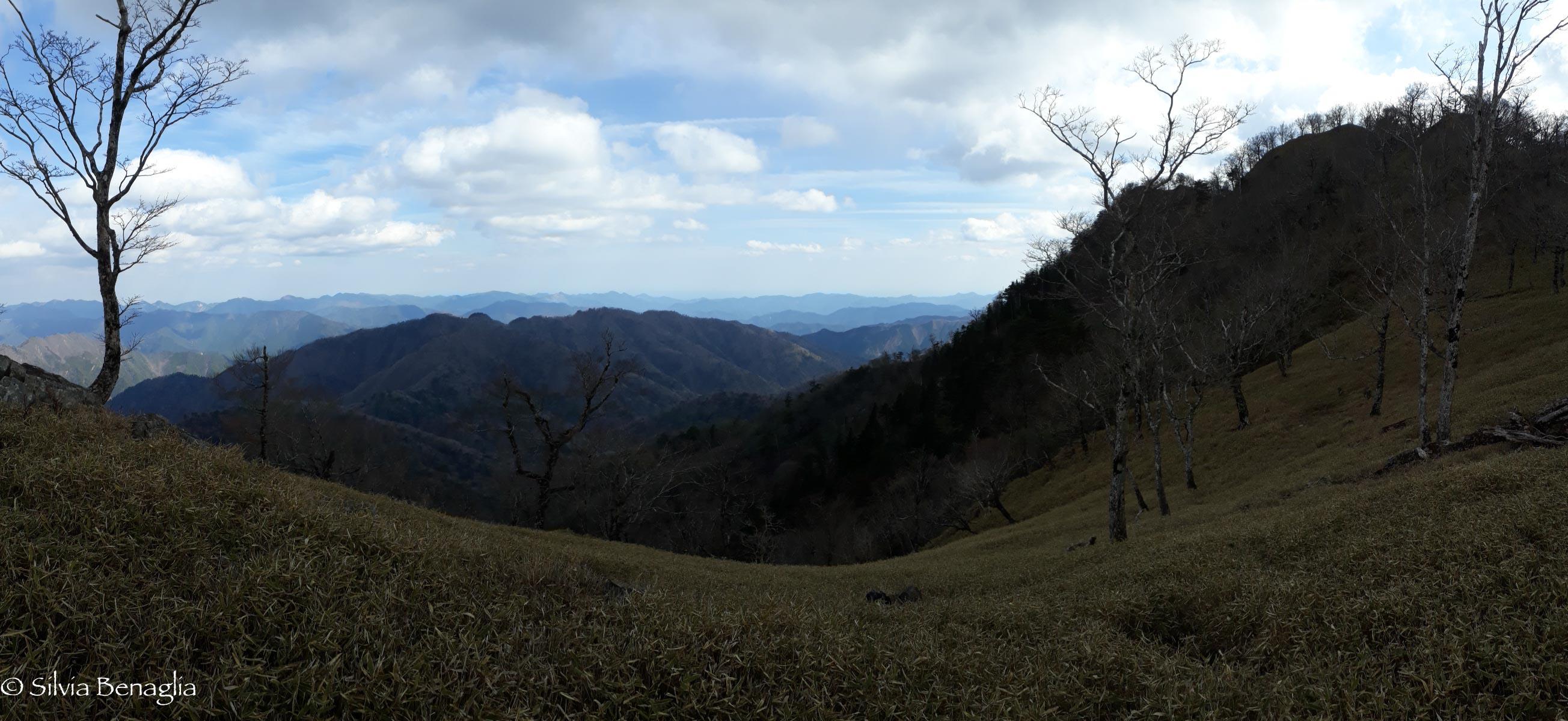 Vgg, panorama