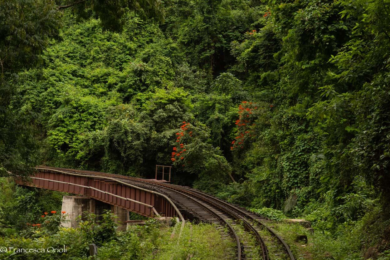 Trenino blu 09