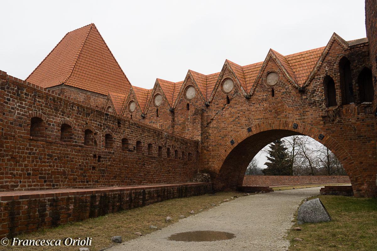 Polonia-8