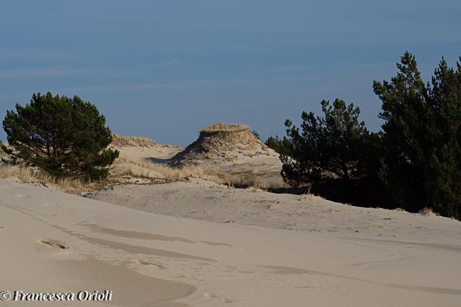 Sulla duna Czolpina