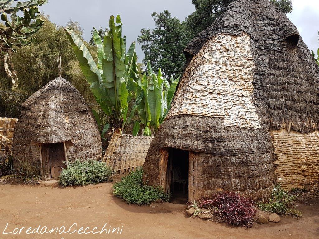 Le capanne dei villaggi Dorze in 'finto banano'