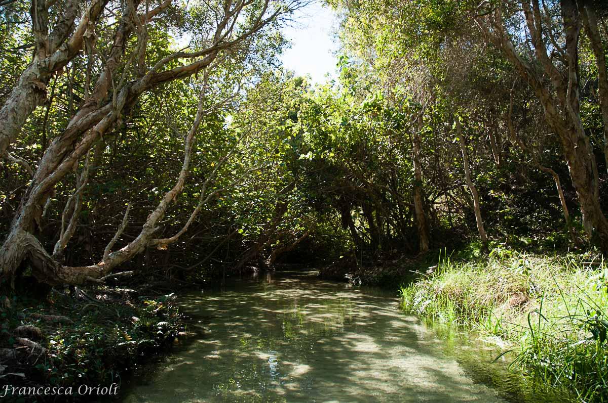 Fraser-Island-31