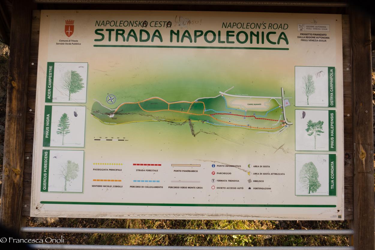 Mappa della strada napoleonica