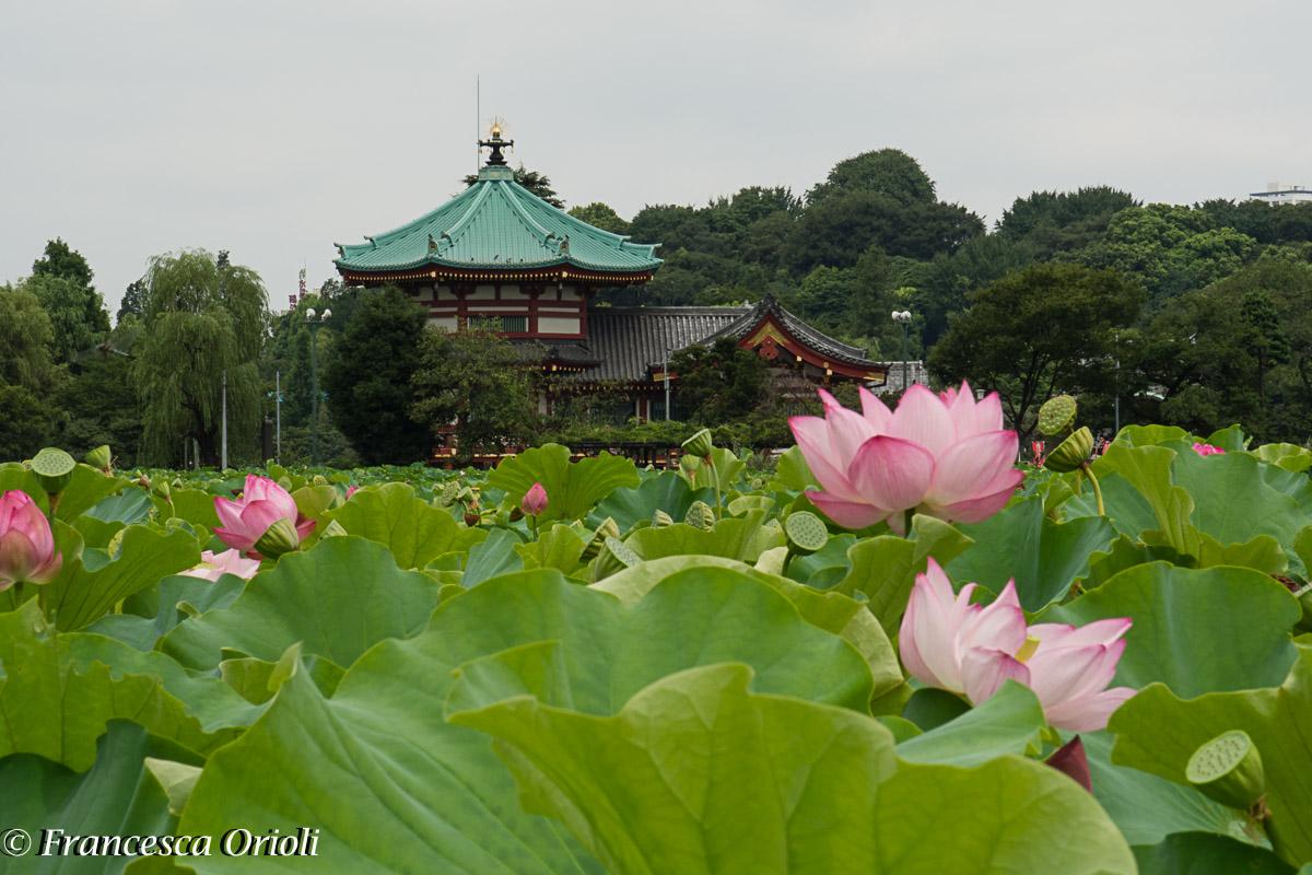 01Tokyo-parco-Ueno