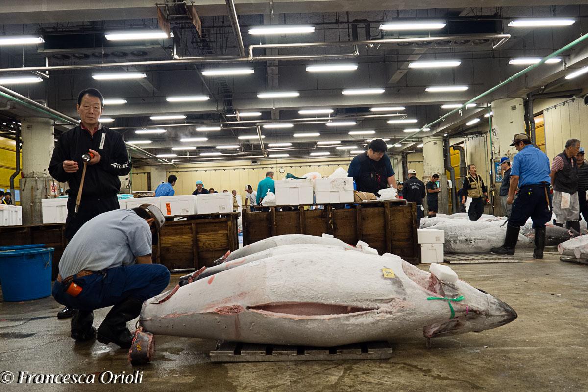 03-Tsukiji