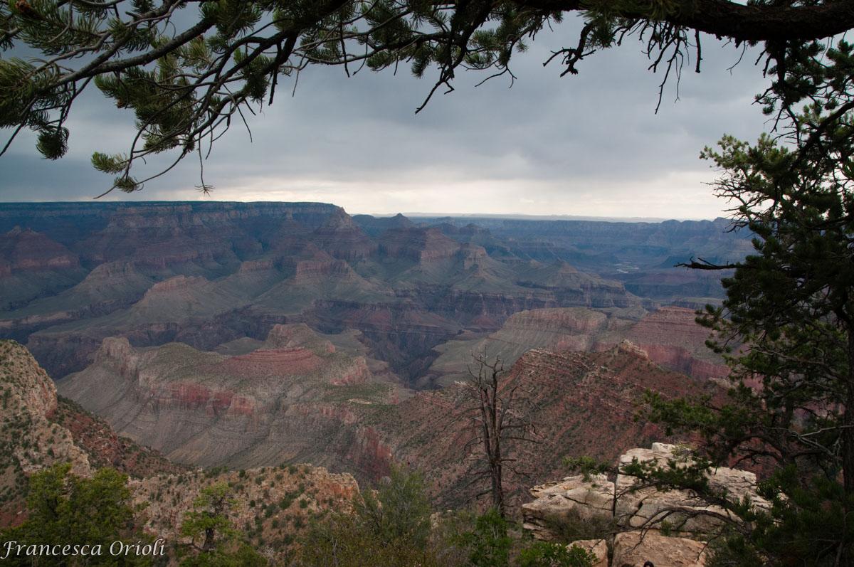 Vista dai viewpoint ad Est