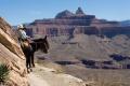 Horse trips che si incontrano lungo il cammino