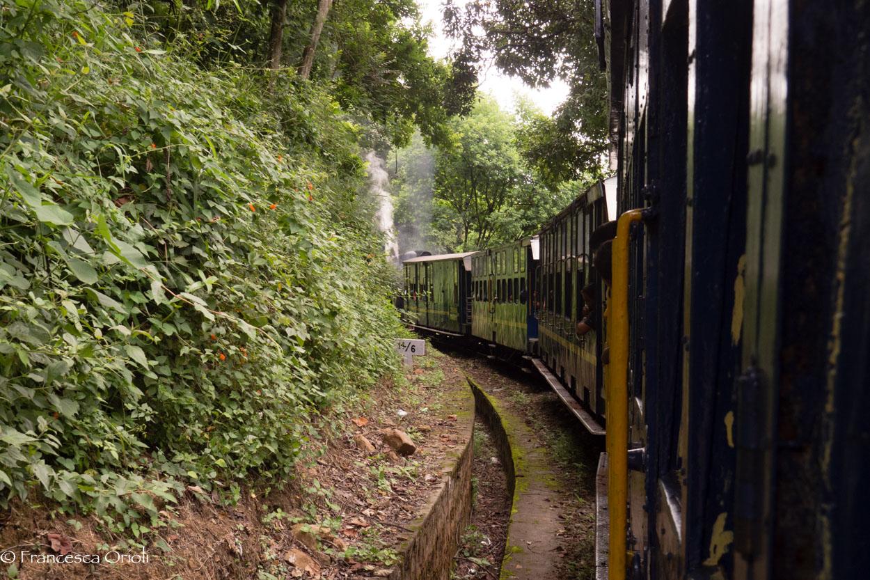 sul trenino blu delle montagne blu