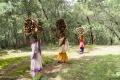 Kodaikanal passeggiata nei boschi