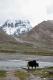 Il Kailash ancora semi coperto