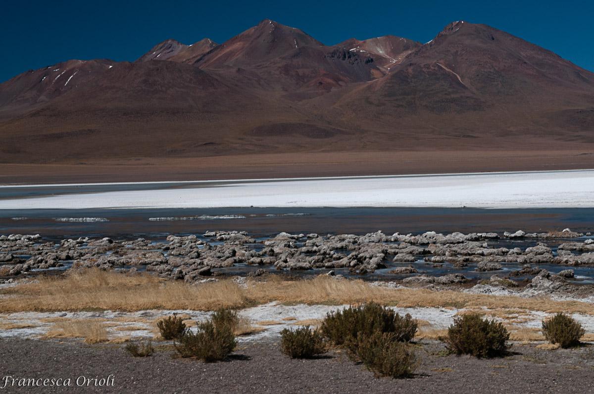 """Le Lagune """"colorade"""" della Bolivia"""