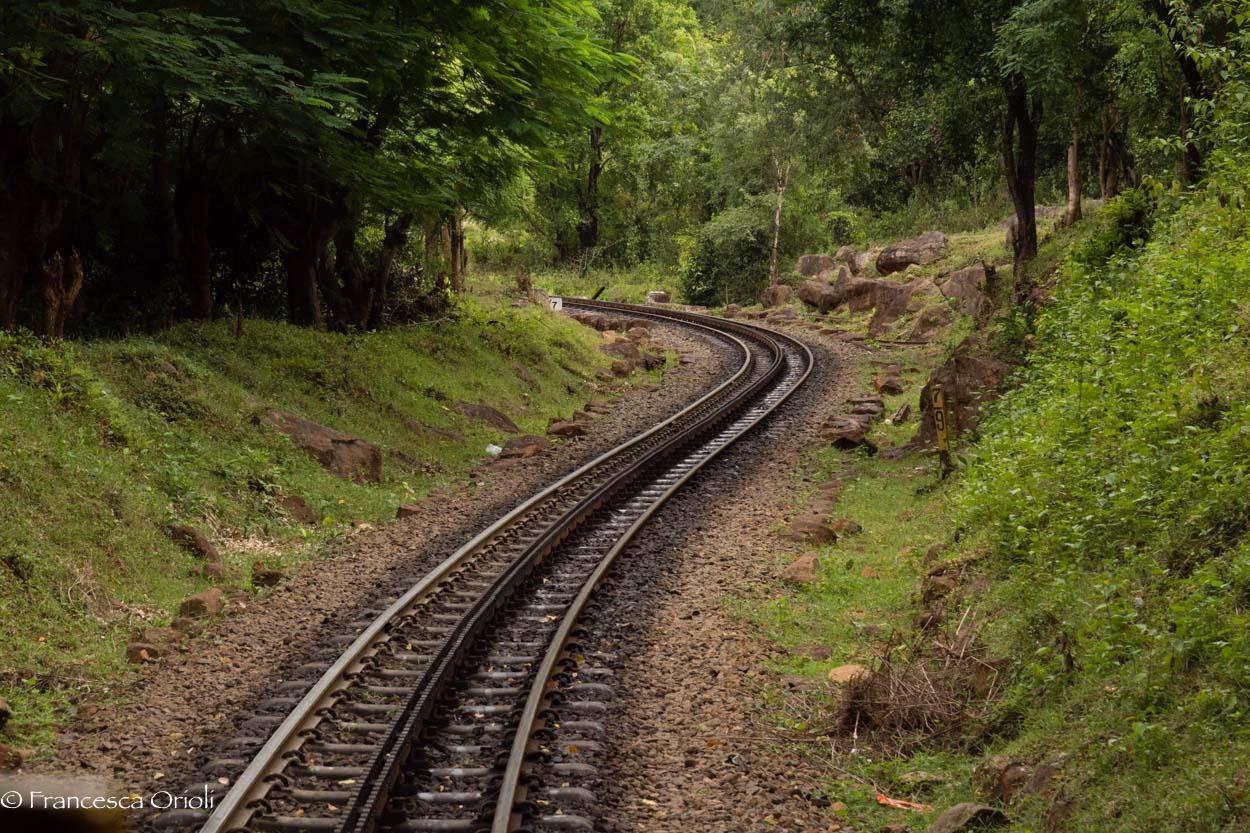 Trenino blu 04