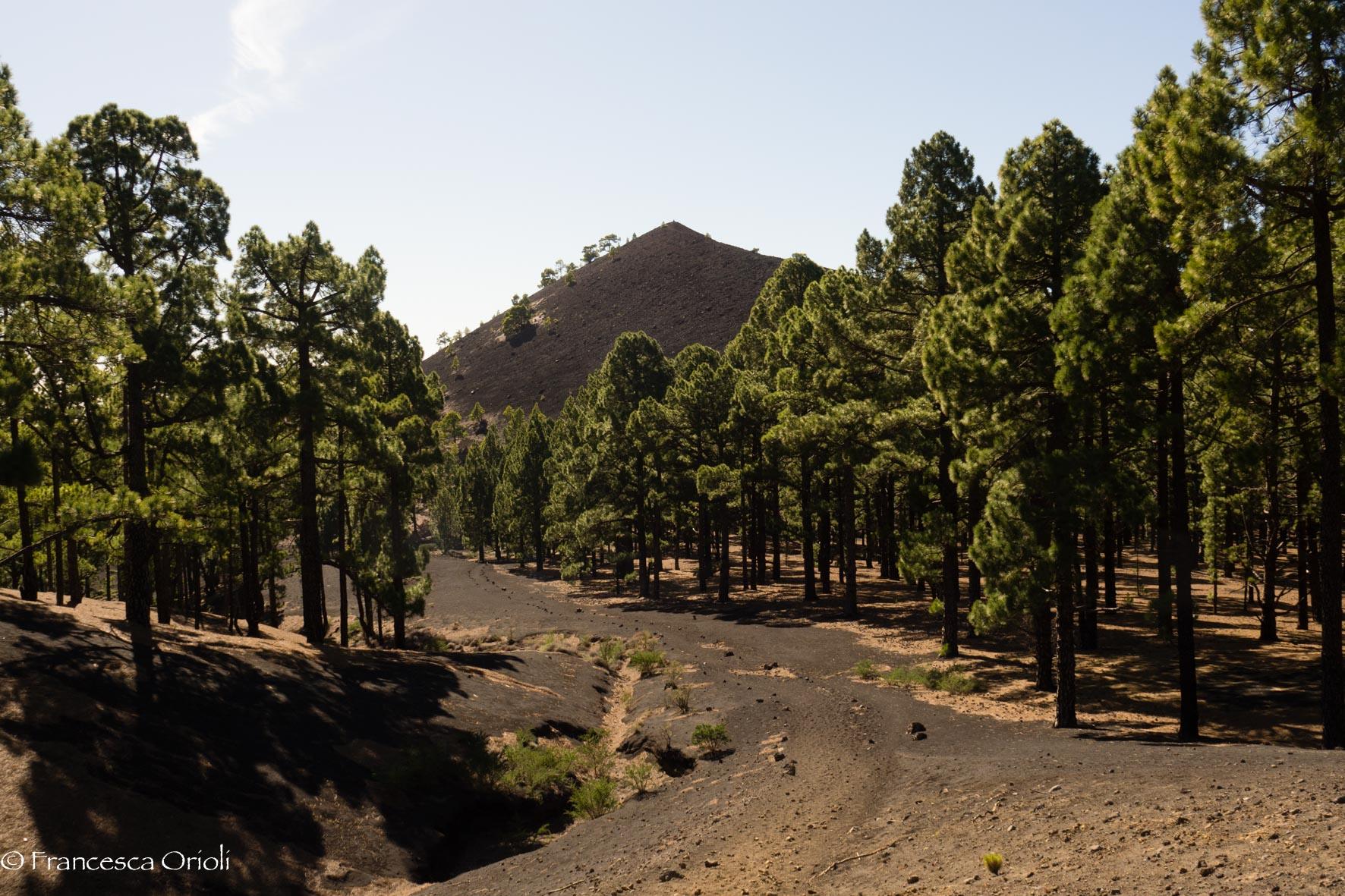 Ruta-de-los-Volcanes-7