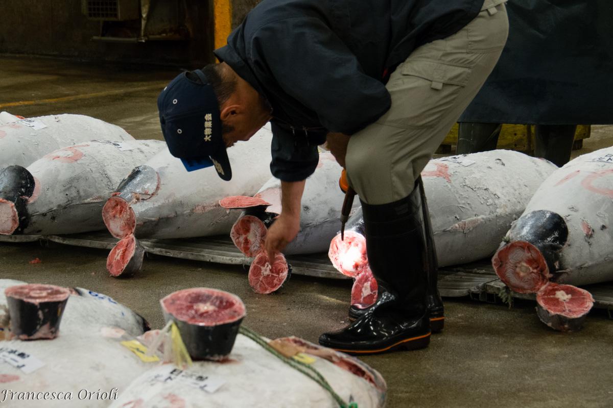 Tsukiji-9